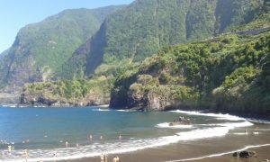 NEWS. MADEIRAZINE .COM (Madeira) cover image