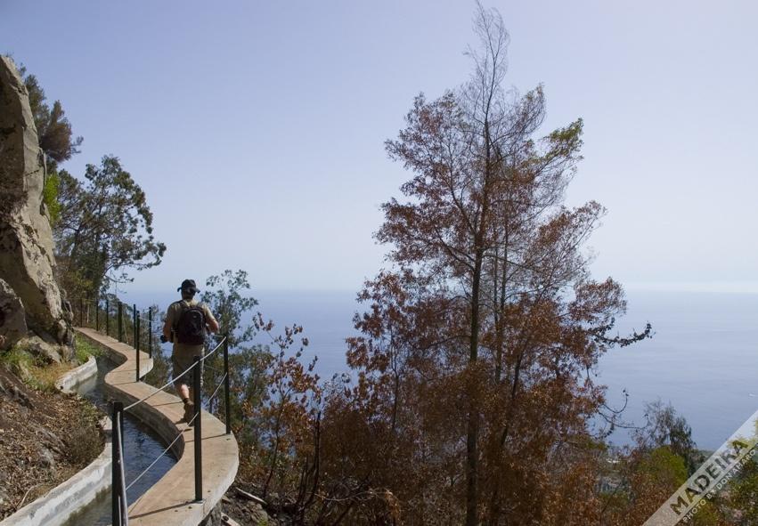 Levada Walk - Madeira by Don Amaro