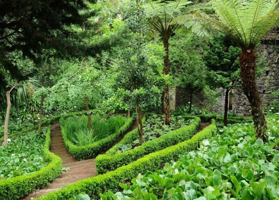 Jardim Municipal do Monte, Madeira