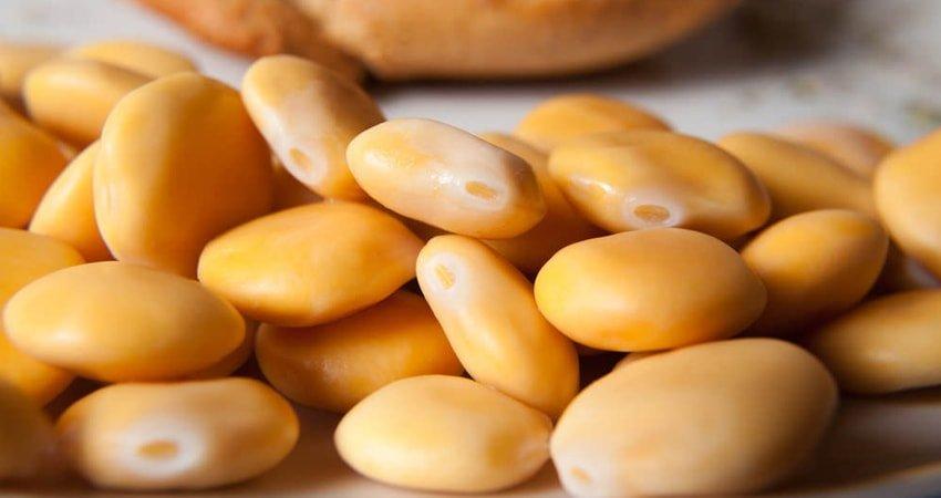 Tremoços Snack Madeira, Portugal