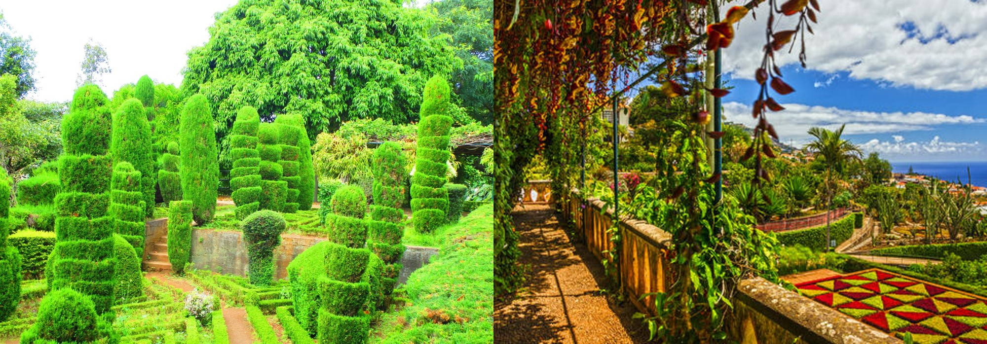 Botanische Gärten Funchal Madeira Portugal