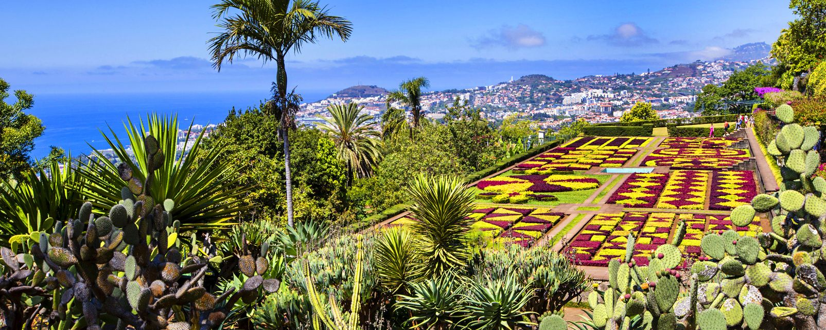 Madeira Botanical Garden – Funchal - Ocean Retreat Trends