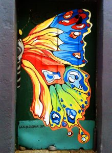 Olga Drak Painted Door Machico Madeira