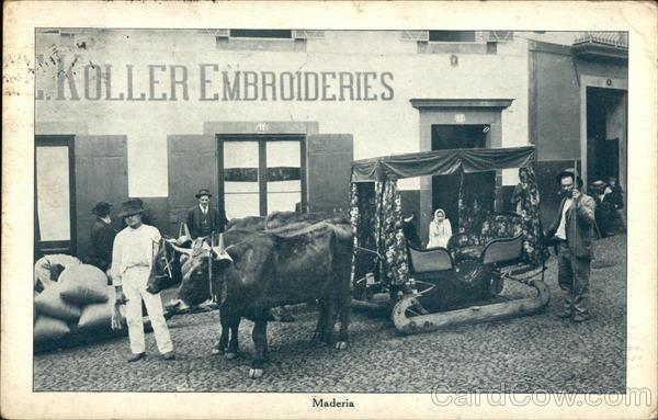 Ox carts carro de bois funchal Madeira Portugal
