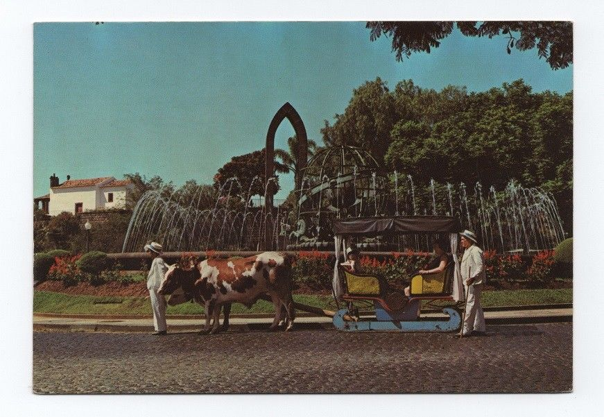 ox carts Madeira Portugal Funchal 1970s