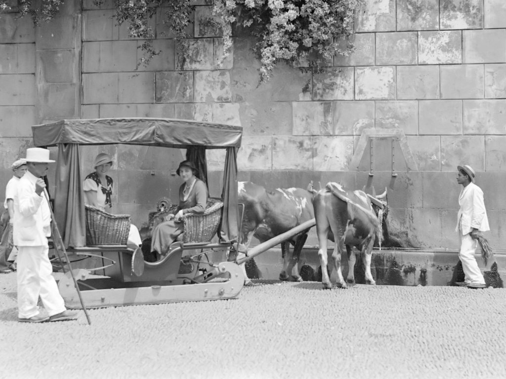 ox carts Madeira Portugal Funchal 1934
