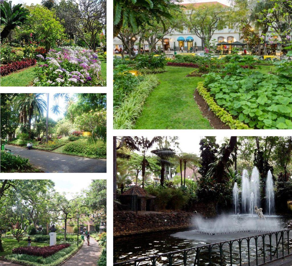 Funchal Botanical Garden Madeira Portugal