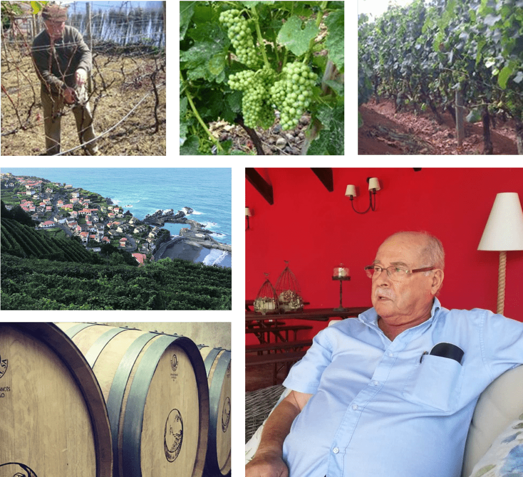 Madeira Winery: Terras do Avô – Grandfather's Land