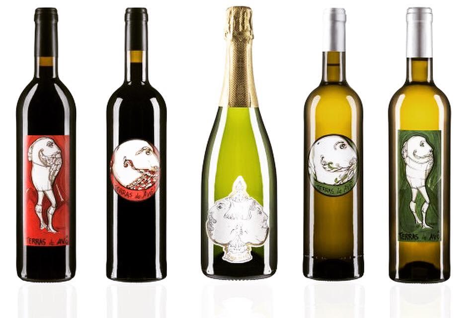 Seixal Wines and Espumante Sparkling wine