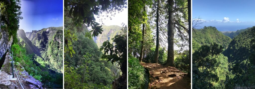 Levada Caldeirao Verde Green Cauldron trail Madeira