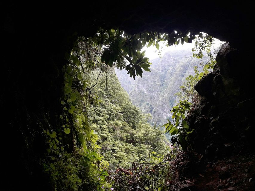 Levada do Caldeirao Verde Madeira Portugal